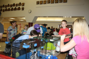Environmental Ed Students Participate in PTA Animal Event